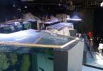 akvarij-u-karlovcu