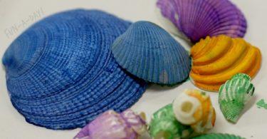 morskih školjki