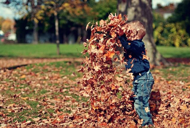 10 zabavnih jesenskih aktivnosti za cijelu obitelj