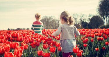 proljeća